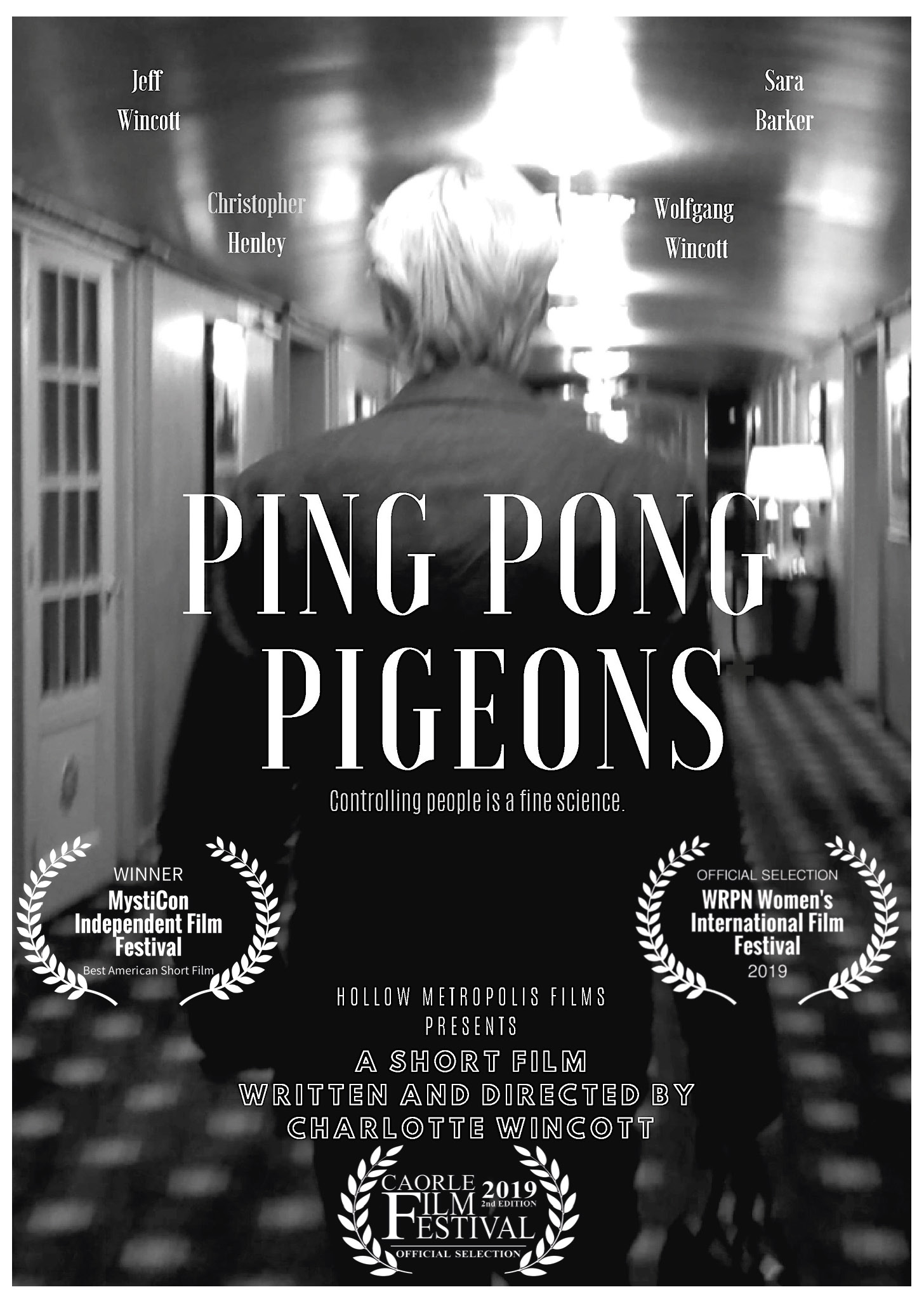 Poster of Ping Pong Pigeons by Charlotte Wincott